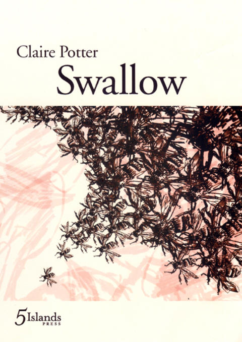 Cover image for Swallow