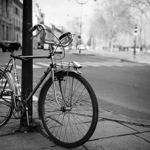 Promo image for Pedal-Powered Essay: Melbourne's Hidden Cycling History