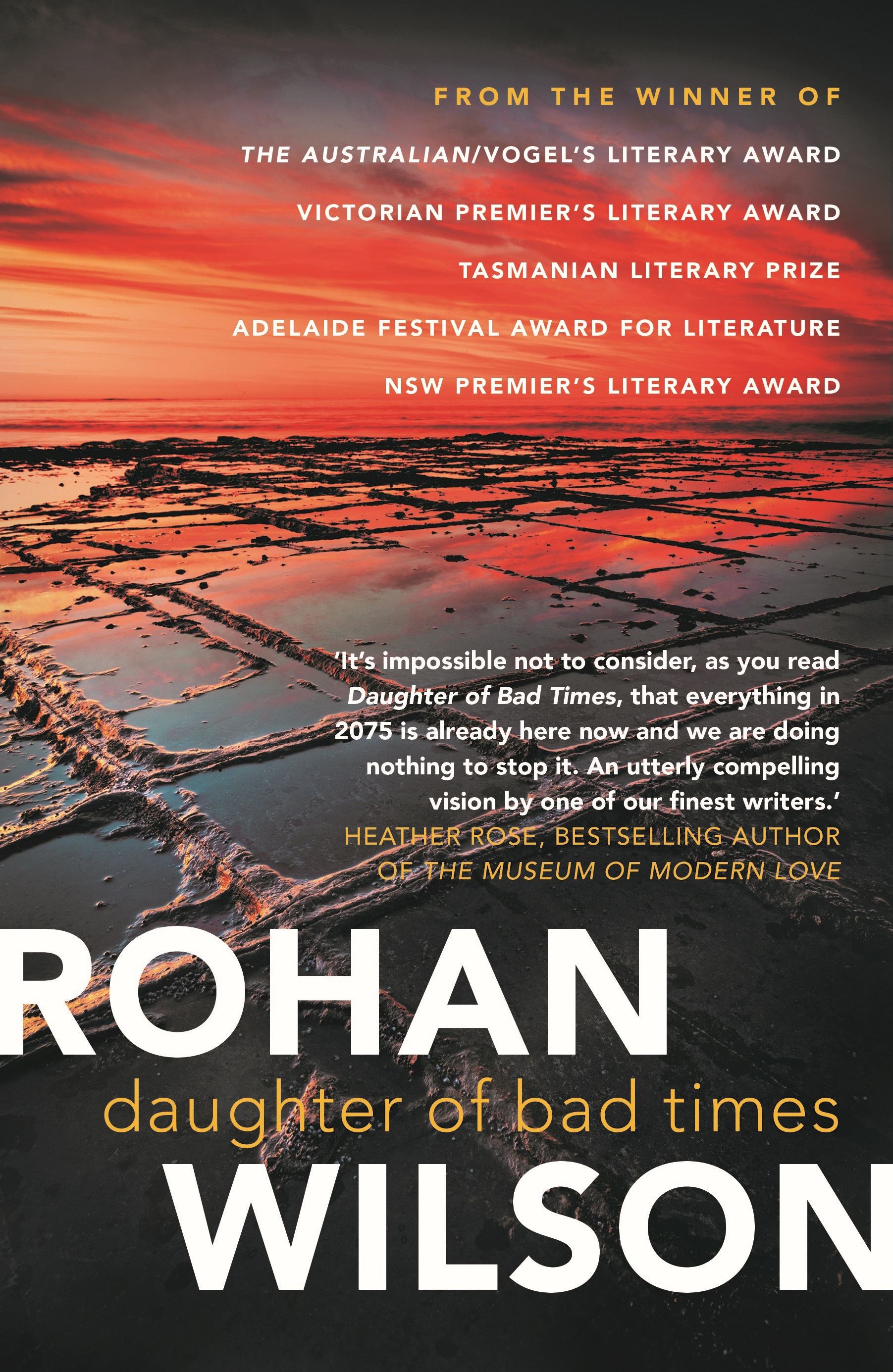 Cover image of 'Daughter of Bad Times' by Rohan Wilson