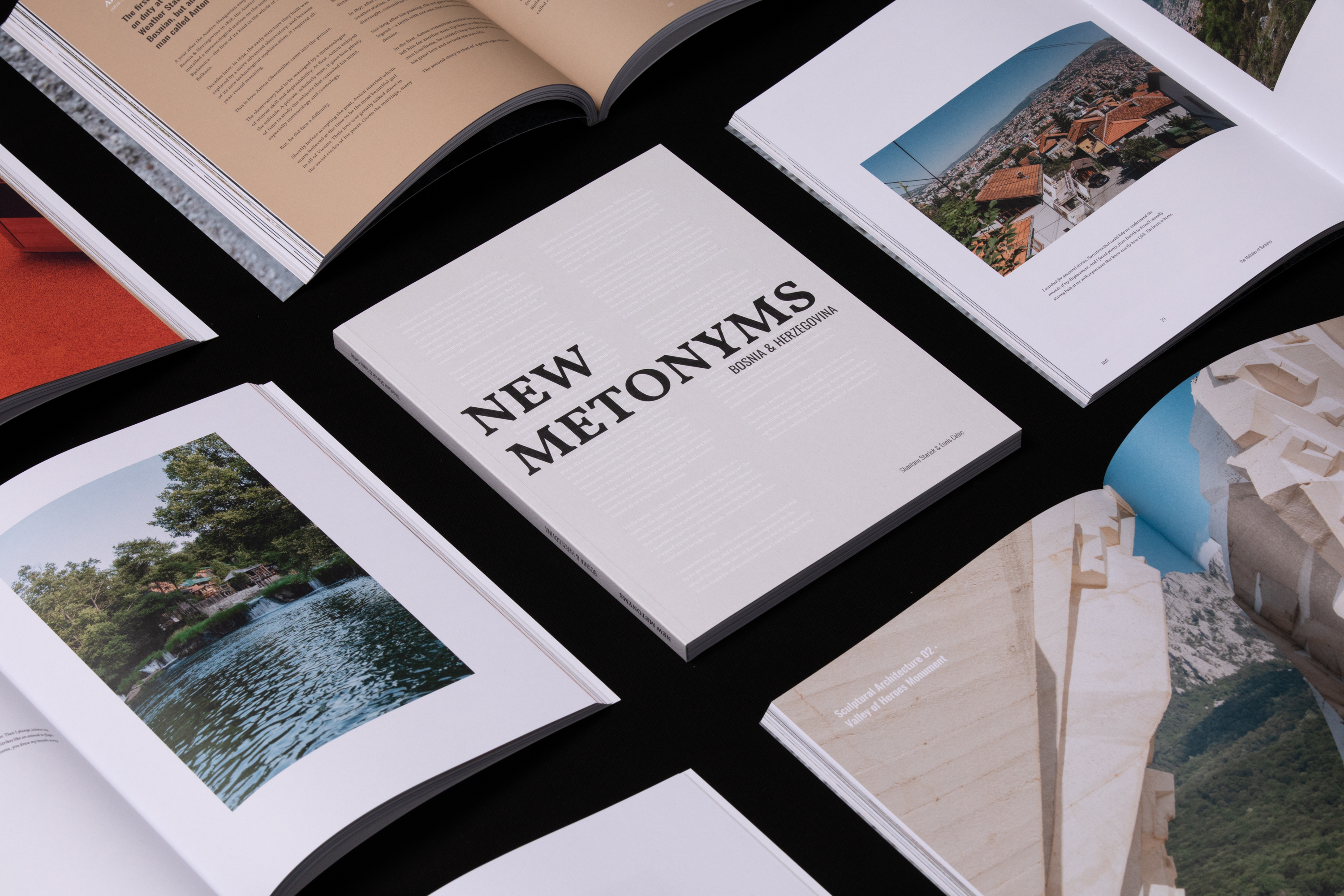 Cover of 'New Metonyms'