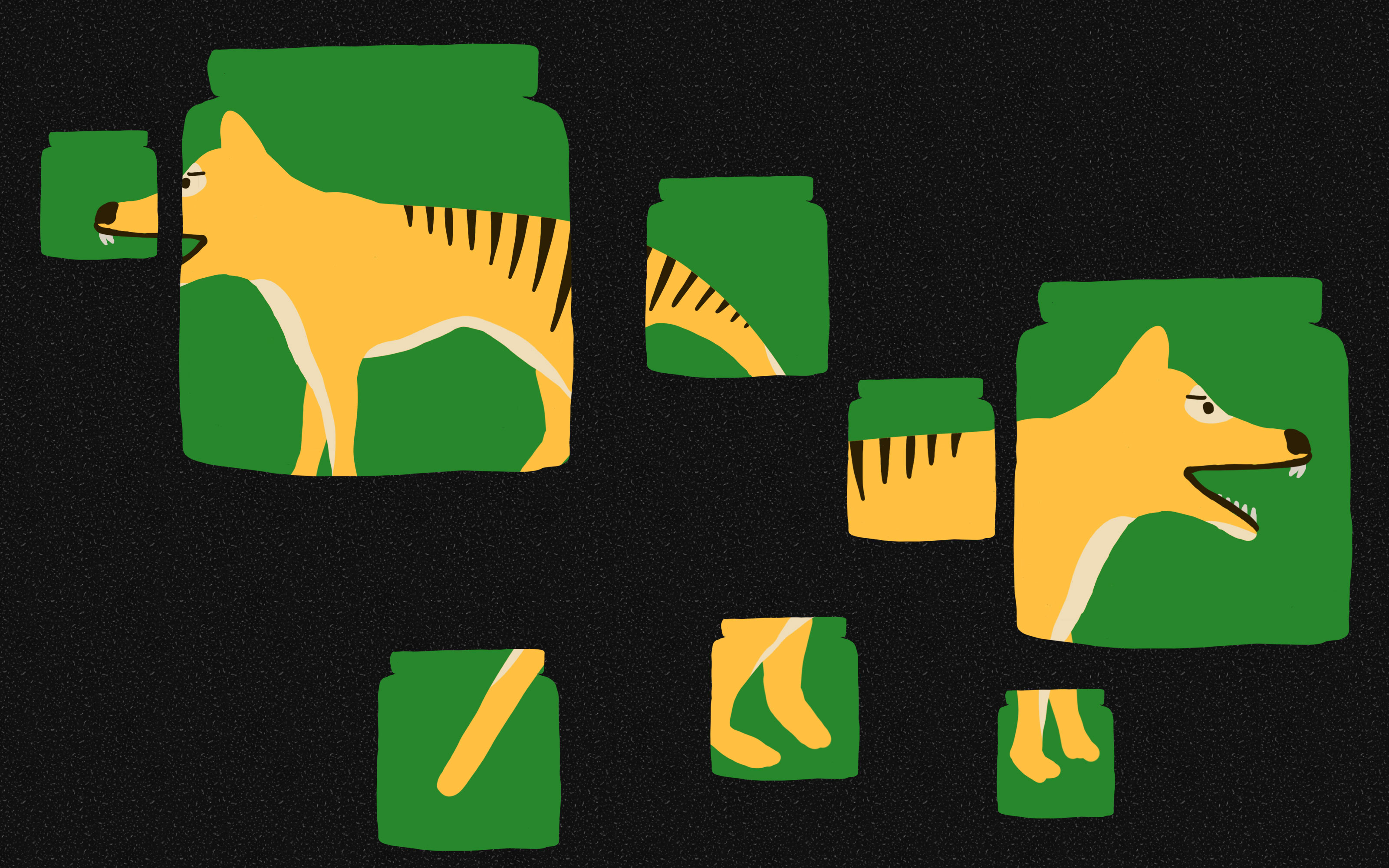 Illustration of the thylacine, different body parts visible within the shape of preservation jars