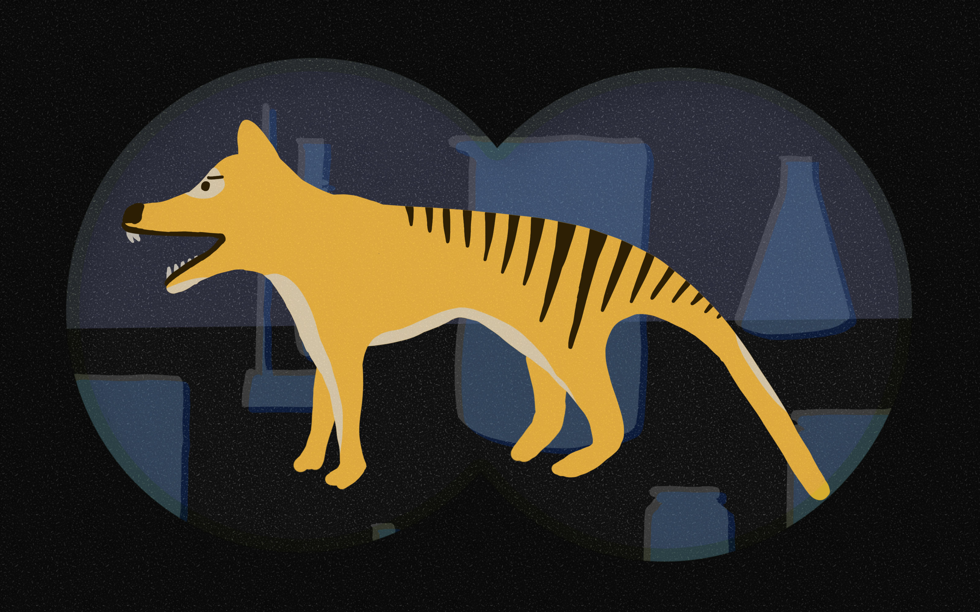 Illustration of the thylacine, surrounded by laboratory and preservation equipment, in the silhouette of binocular lenses