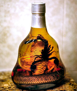 Snake wine: 'The snake is left to steep in the rice wine for many months to let the poison dissolve in the wine. The ethanol makes the venom inactive so it is not dangerous, and snake wine supposedly has many health benefits.'