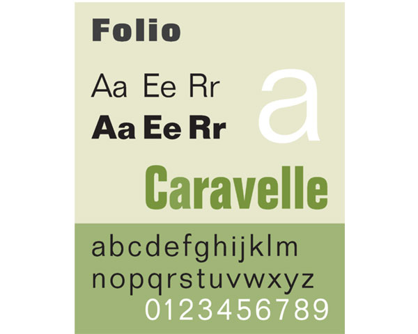 Common typefaces for the web