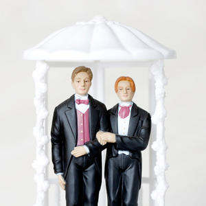 Promo image for The Case for Gay Marriage