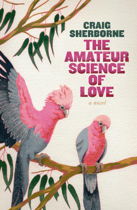 Cover image for The Amateur Science of Love
