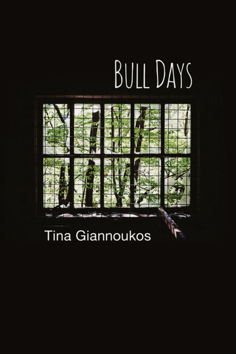 Cover image for Bull Days