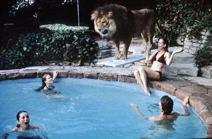 Tippi Hedren and family, including a teenage Melanie Griffith, at home with Neil.