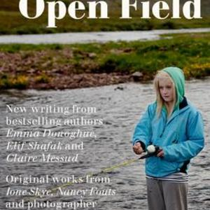 Promo image for 'Icing on the Cake': On Open Field, a Digital-Only Magazine