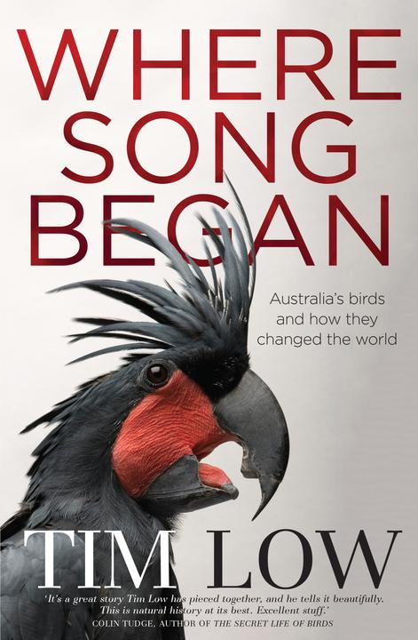 Cover image for Where Song Began