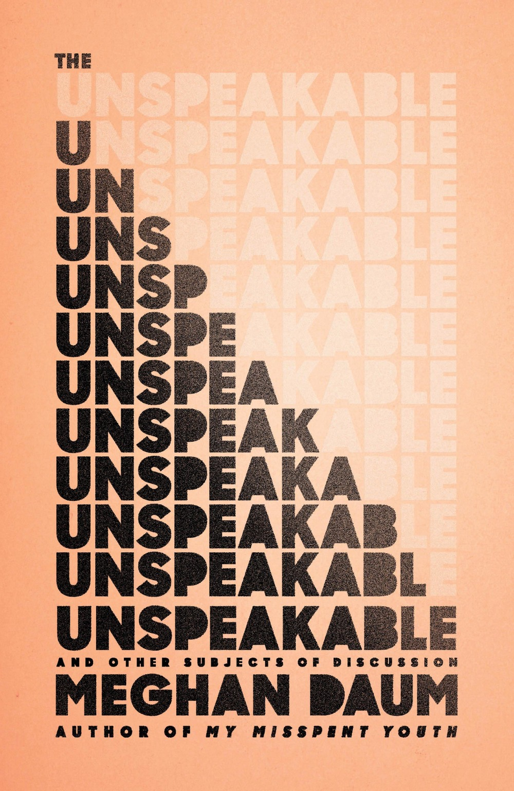 Meghan Daum - The Unspeakable
