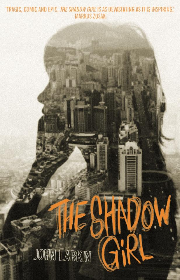 Image result for shadow girl book cover larkin