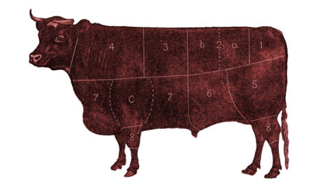 Promo image for Hating Your Guts: why we struggle with offal