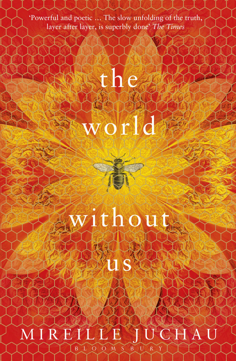 Cover image of the book 'The World Without Us' by Mireille Juchau