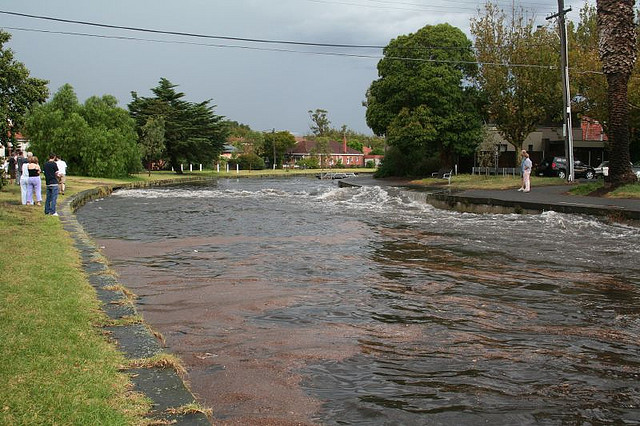 Elwood's canals, in flood.
