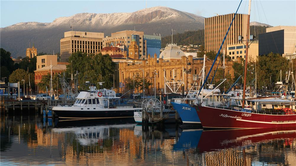 '*Island* has always been national in scope, often with an international flavour. But it has always done this so from a Tasmanian perspective.'